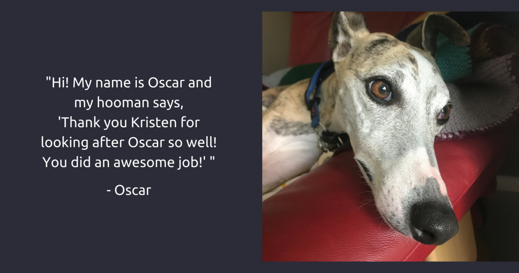 Canberra's Friendly Petsitter Testimonial - Oscar